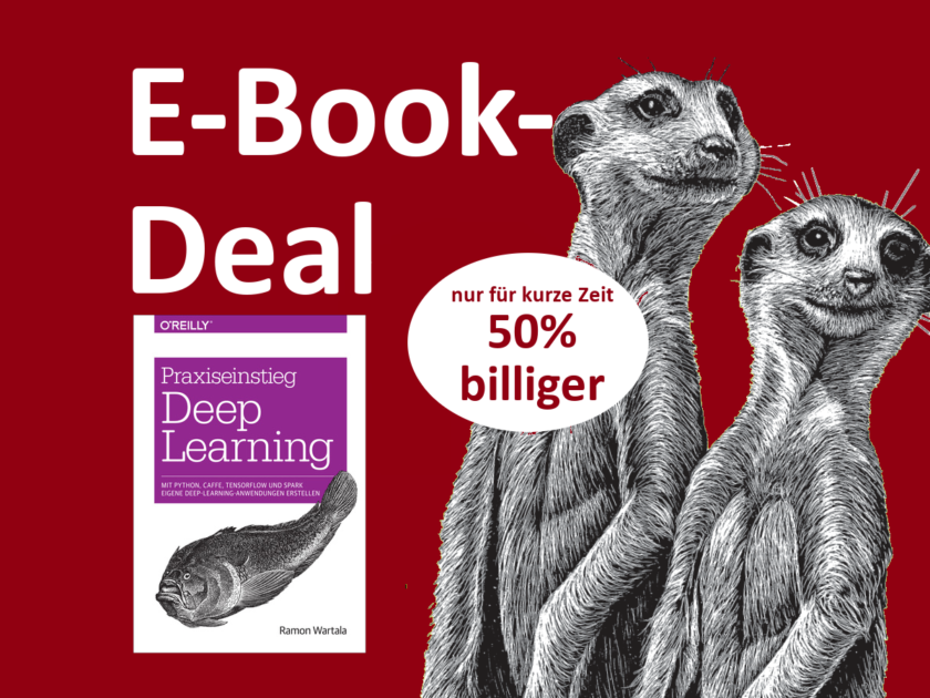 E-Book Praxiswissen Deep Learning