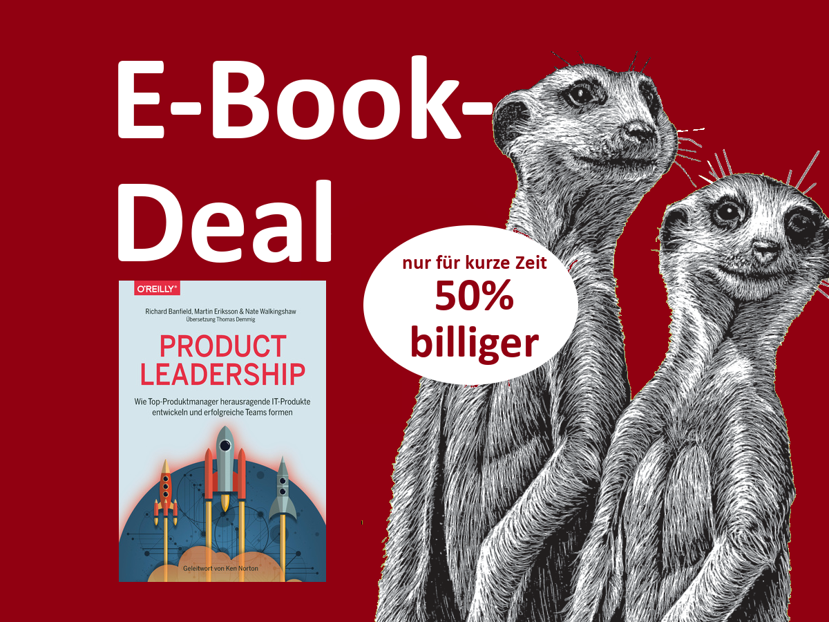 E-Book Product Leadership