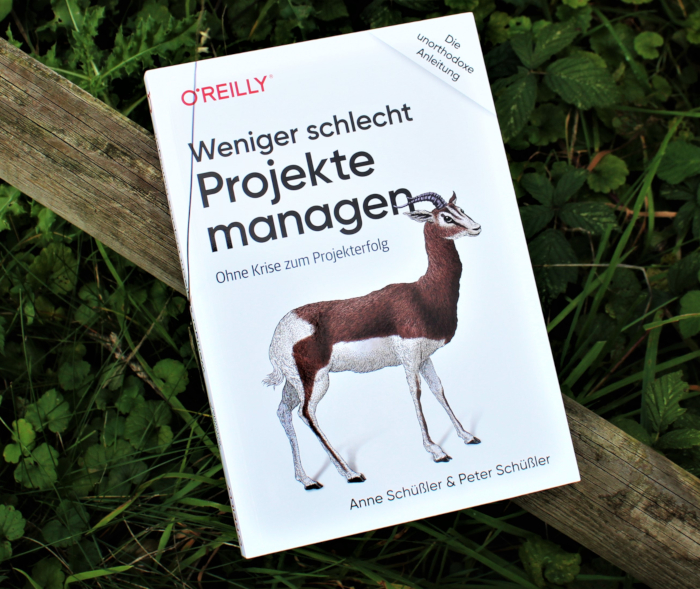 Projektmanagement Buch